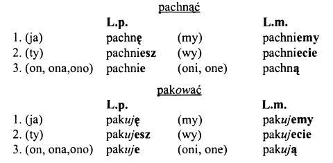 служит будущее время в польском языке поэтому термобелье
